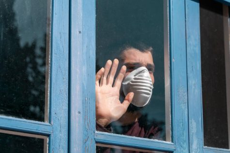 How to survive quarantine